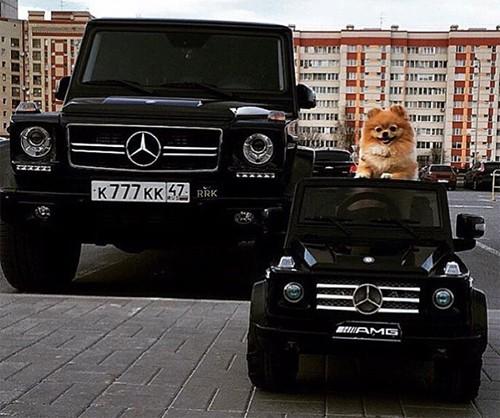 Hội con nhà giàu Nga và thú vui khoe siêu xe - ảnh 16