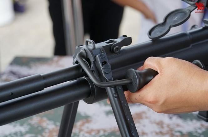 Nhận diện loại súng bắn tỉa nguy hiểm nhất Trung Quốc - ảnh 13