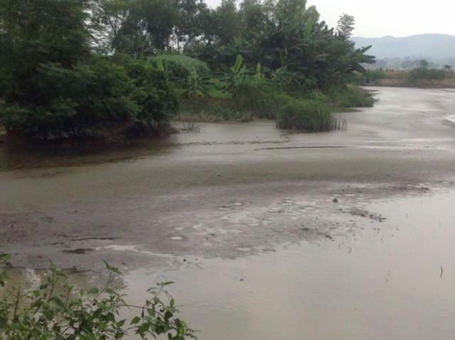 Lo thắt lòng cảnh cá chết hàng loạt trên sông Bùng - ảnh 4
