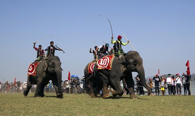 Hàng chục chú voi 'đeo áo số'... thi chạy, vượt hồ - ảnh 13