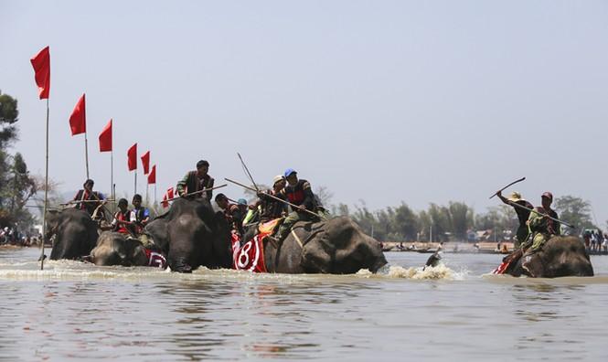 Hàng chục chú voi 'đeo áo số'... thi chạy, vượt hồ - ảnh 19