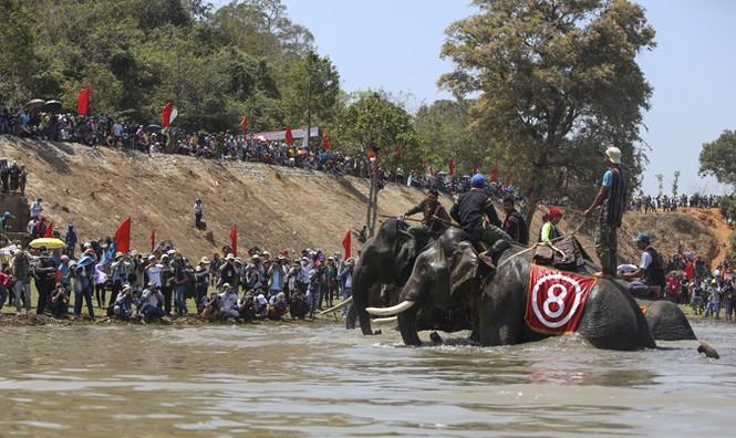 Hàng chục chú voi 'đeo áo số'... thi chạy, vượt hồ - ảnh 21