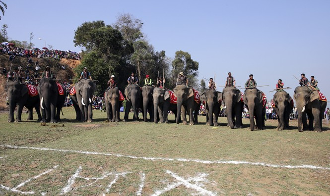 Hàng chục chú voi 'đeo áo số'... thi chạy, vượt hồ - ảnh 7