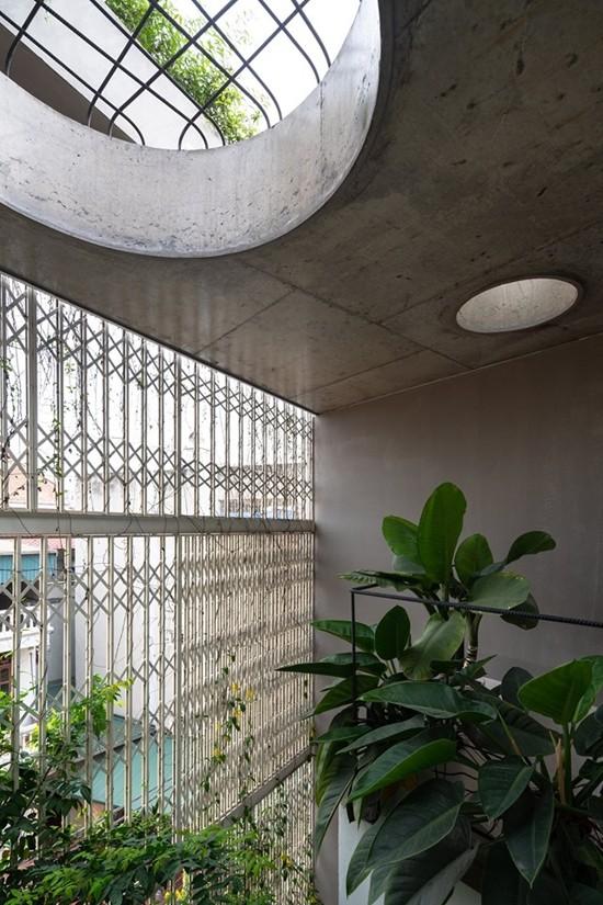 Nhà 5 tầng Hà Nội 'giấu' giàn cây xanh mát sau lớp mành sắt - ảnh 11