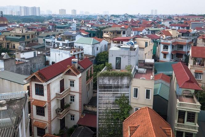Nhà 5 tầng Hà Nội 'giấu' giàn cây xanh mát sau lớp mành sắt - ảnh 1