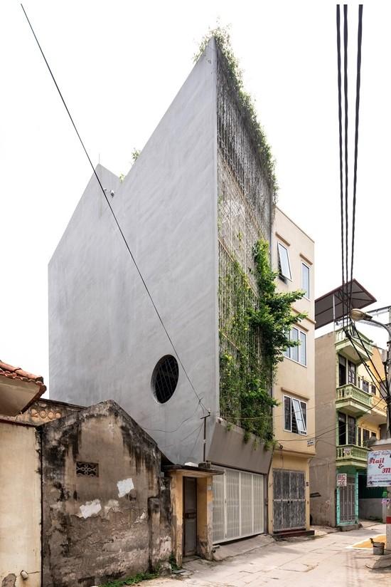 Nhà 5 tầng Hà Nội 'giấu' giàn cây xanh mát sau lớp mành sắt - ảnh 2