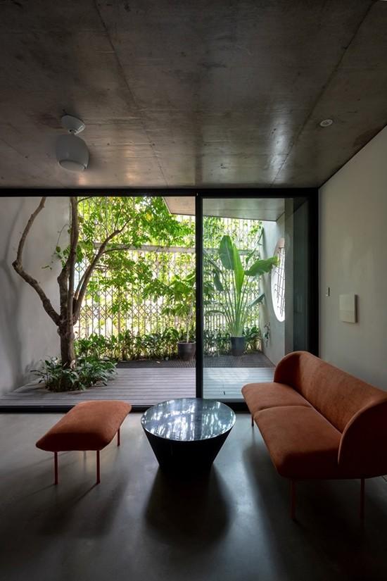 Nhà 5 tầng Hà Nội 'giấu' giàn cây xanh mát sau lớp mành sắt - ảnh 6
