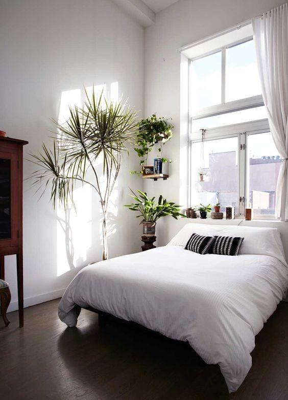Phòng ngủ nổi bật cho nhà phố hẹp nhờ biến tấu cổ điển và cây xanh - ảnh 8