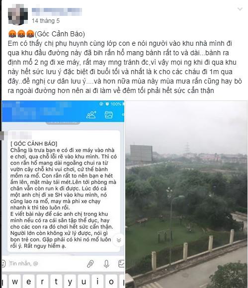 Phát quang cây cối xung quanh chung cư Hà Nội liên tục bị rắn độc 'bủa vây'  - ảnh 3