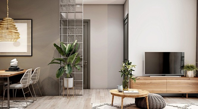 Căn hộ 30m2 có nội thất đơn giản nhưng vô cùng sang trọng - ảnh 6