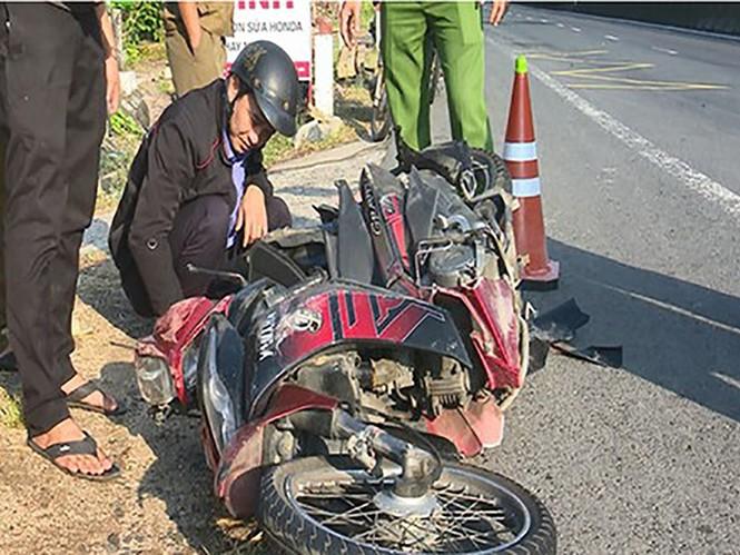Truy quét hơn 1.000 km tìm tài xế tông chết người - ảnh 2