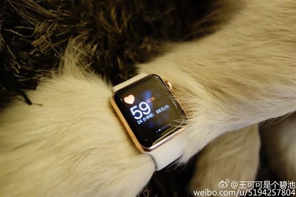 Con trai tỷ phú Trung Quốc đeo Apple Watch cho chó - ảnh 3