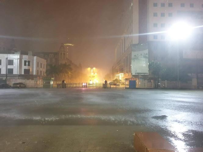 Hình ảnh bão số 3 đổ bộ, Móng Cái cây đổ ngổn ngang - ảnh 9