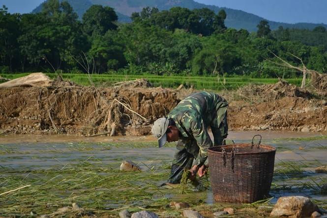 Bàng hoàng trước cảnh tan hoang sau lũ quét ở Nghệ An - ảnh 7