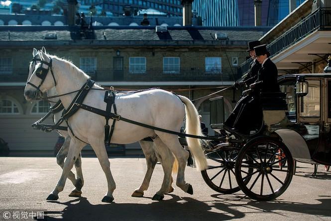 Ngắm xe ngựa cổ rước Meghan Markle - Hoàng tử Anh tới lễ đường - ảnh 6