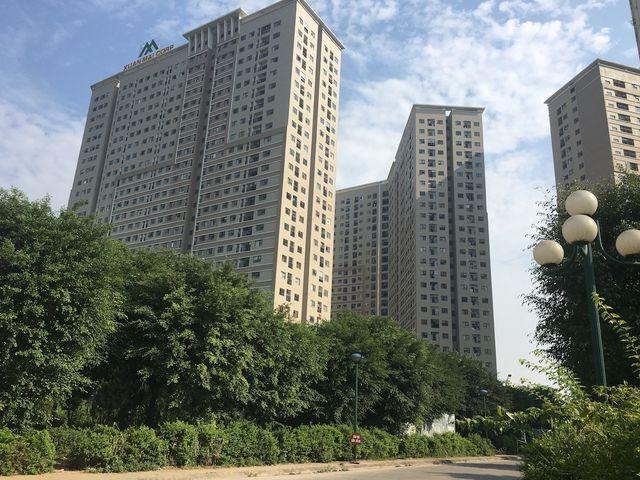 Sự thật rắn độc 'bủa vây' toà chung cư mới ở Hà Nội - ảnh 1