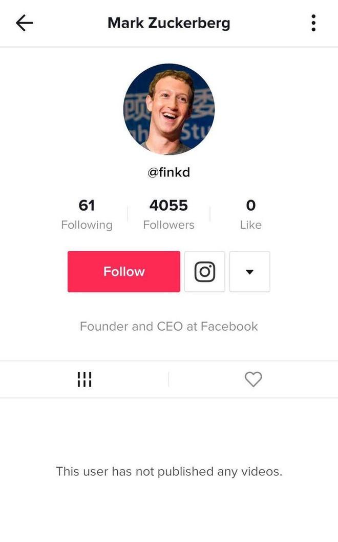 Mark Zuckerberg bí mật chơi TikTok theo dõi người nổi tiếng và các 'boss' chó cưng - ảnh 1