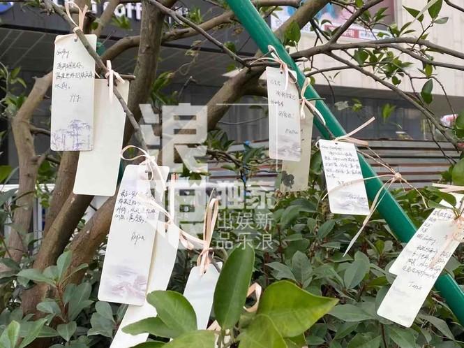 Rơi nước mắt với chia sẻ của bố mẹ Cao Dĩ Tường, hé lộ 'hợp đồng sinh tử' - ảnh 2