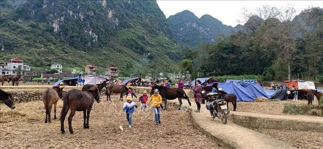 Cao Bằng: Dân dựng lán ngủ ngoài đồng sau nhiều trận động đất liên tiếp - ảnh 2