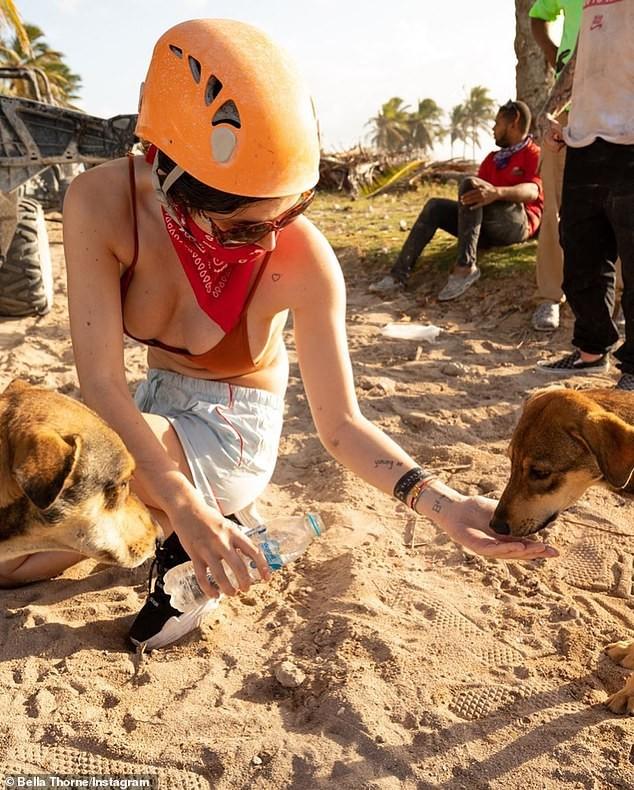 Bella Thorne khoe body nóng bỏng với bikini hoạ tiết da báo - ảnh 6