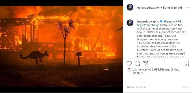 Leonardo Dicaprio và sao quốc tế kêu gọi ủng hộ Úc vì thảm hoạ cháy rừng - ảnh 1