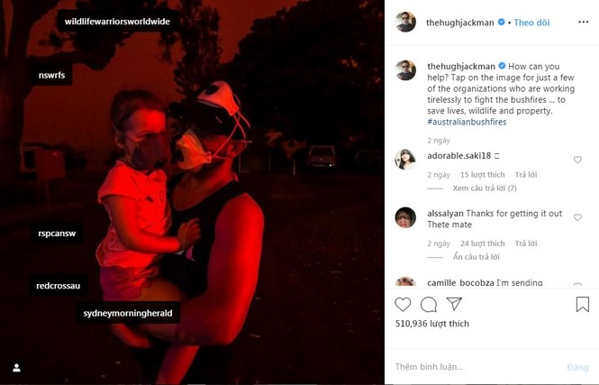 Leonardo Dicaprio và sao quốc tế kêu gọi ủng hộ Úc vì thảm hoạ cháy rừng - ảnh 3