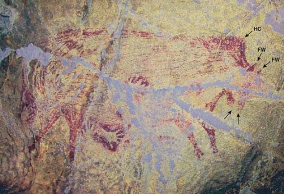 Phát hiện bức tranh hang động cổ xưa nhất thế giới - ảnh 2