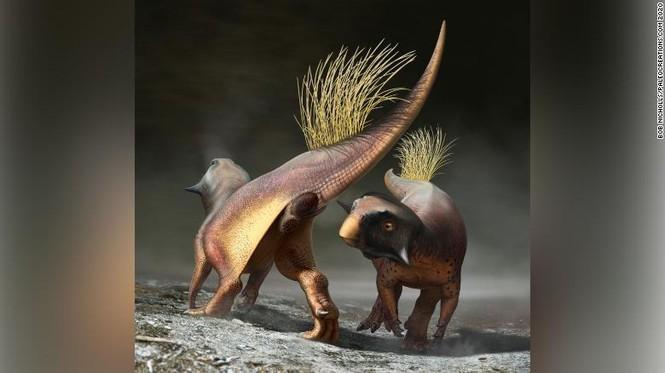 Hóa thạch tiết lộ cách khủng long đi vệ sinh và giao phối - ảnh 2