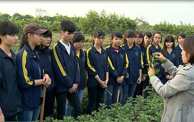 Giám đốc HV Nông nghiệp đề xuất, định hướng phát triển cho nông nghiệp tuần hoàn - ảnh 3