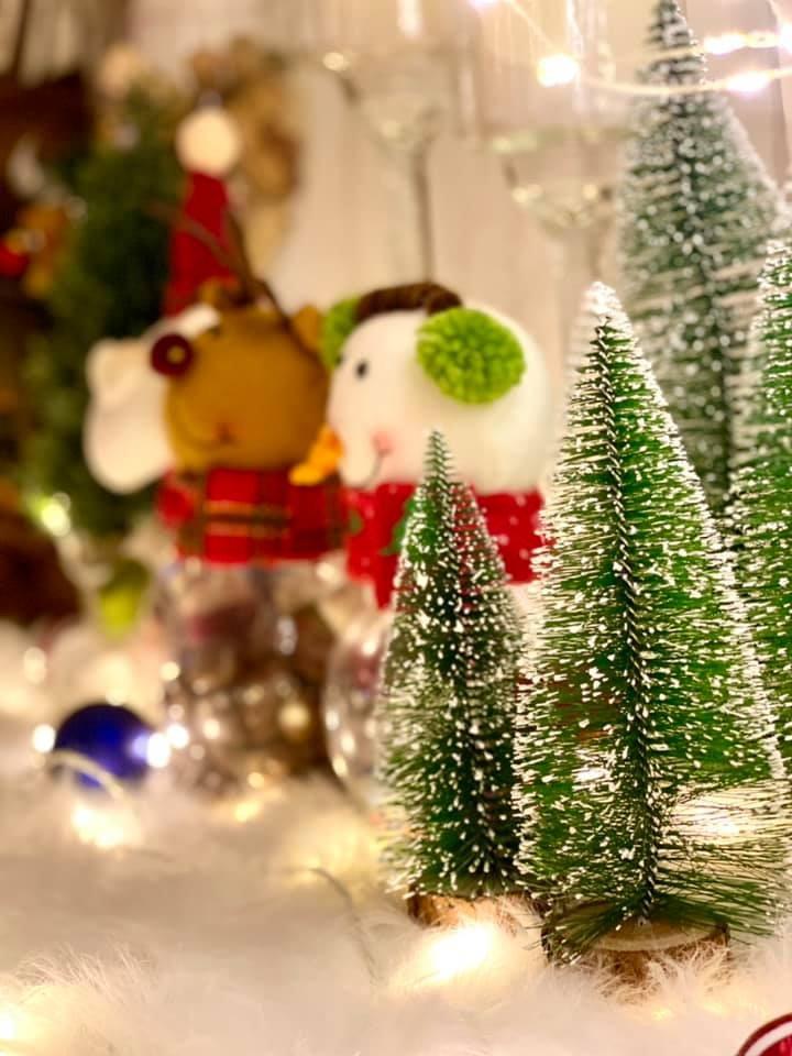 Siêu mẫu Thúy Hạnh trang hoàng biệt thự triệu đô đón Giáng sinh  - ảnh 5