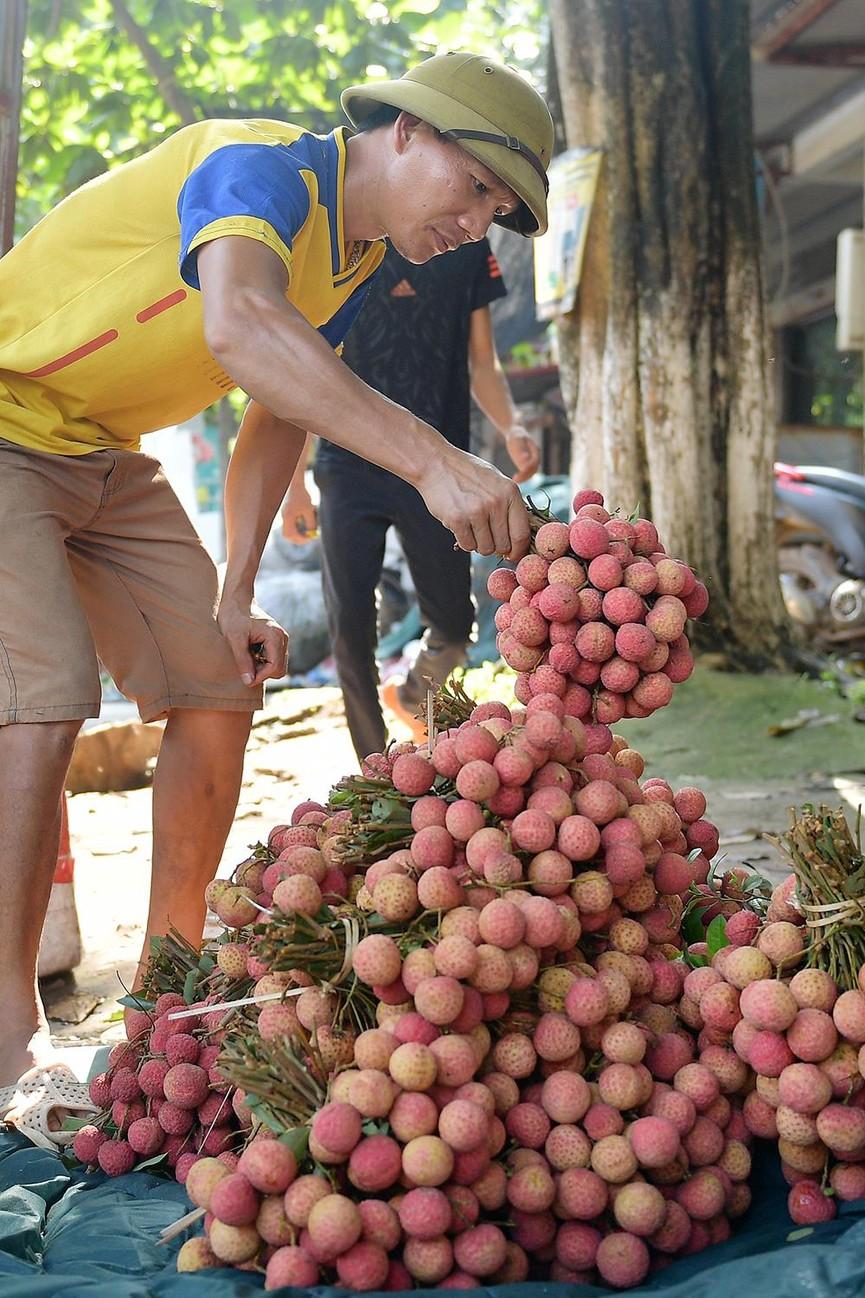 Chôn chân dưới trời nắng tại thủ phủ vải thiều Bắc Giang - ảnh 11
