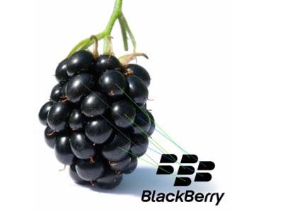 BlackBerry: Khủng hoảng nhưng không mắc nợ