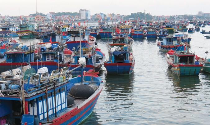 Nhiều tàu cá nằm bờ chờ lao động.