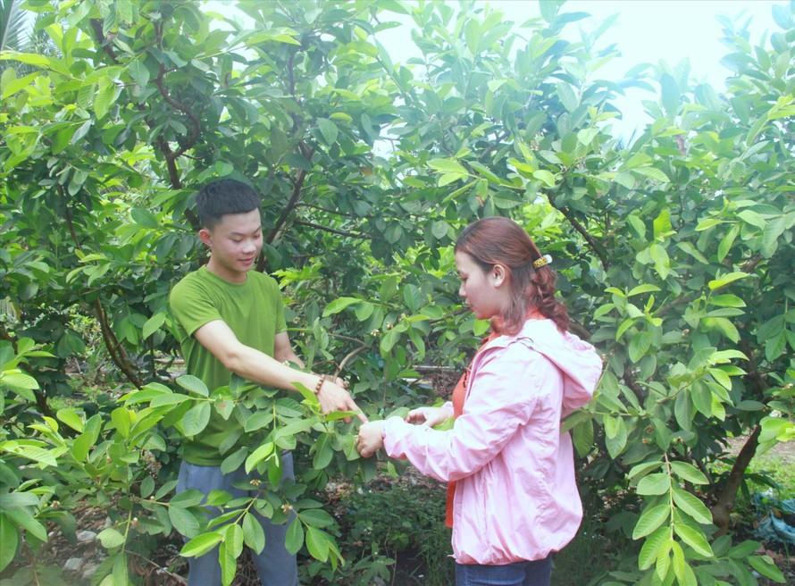 Nguyễn Đức Thành chia sẻ cách trồng các loại cây ăn trái