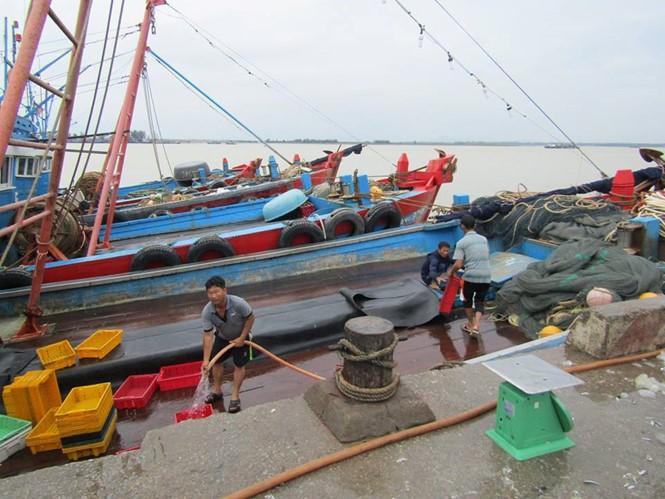 Ngư dân tại các tỉnh Nghệ An, Hà Tĩnh đưa tàu thuyền cập bờ tránh bão.